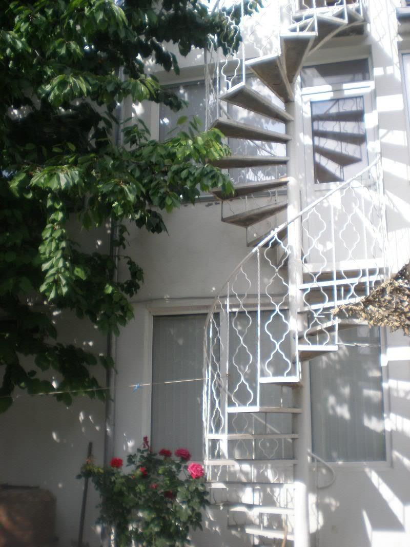 отель Ромашка